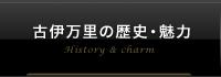 古伊万里の歴史・魅力